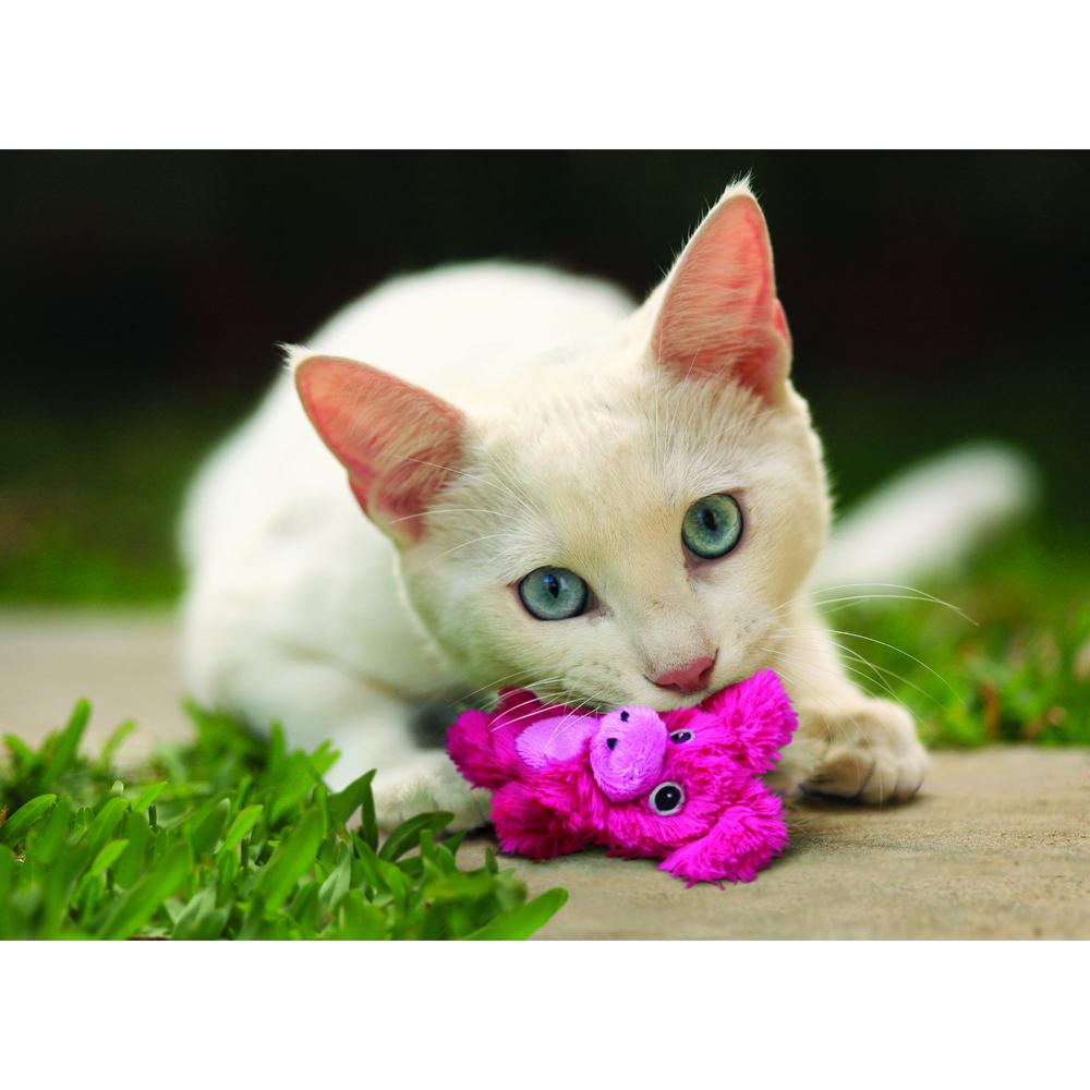 KONG Catnip Botanicals Katzenspielzeug, Bild 9
