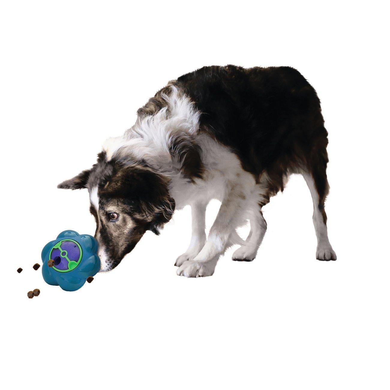 KONG Flipz Hundespielzeug, Bild 3