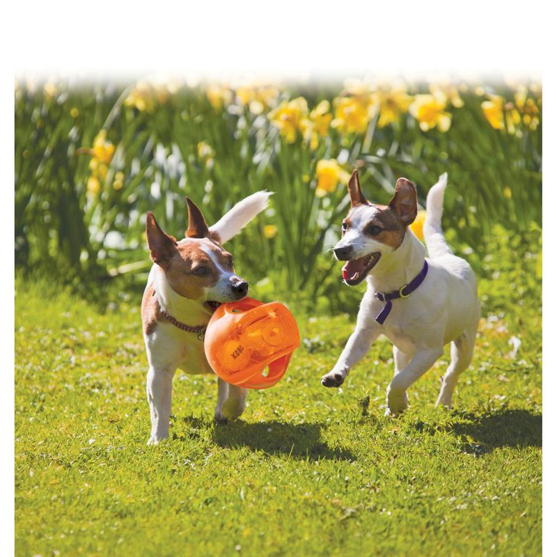 KONG Jumbler Hundespielzeug, Bild 7