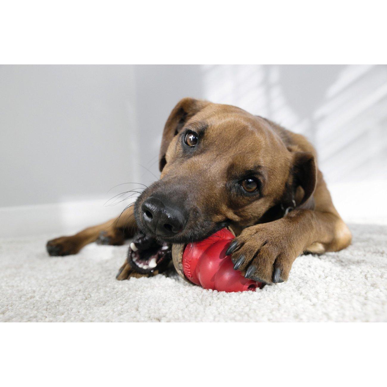 KONG Marathon Hundesnack, Bild 2