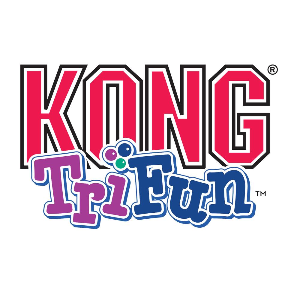 KONG Tri-Fun Hundespielzeug, Bild 3