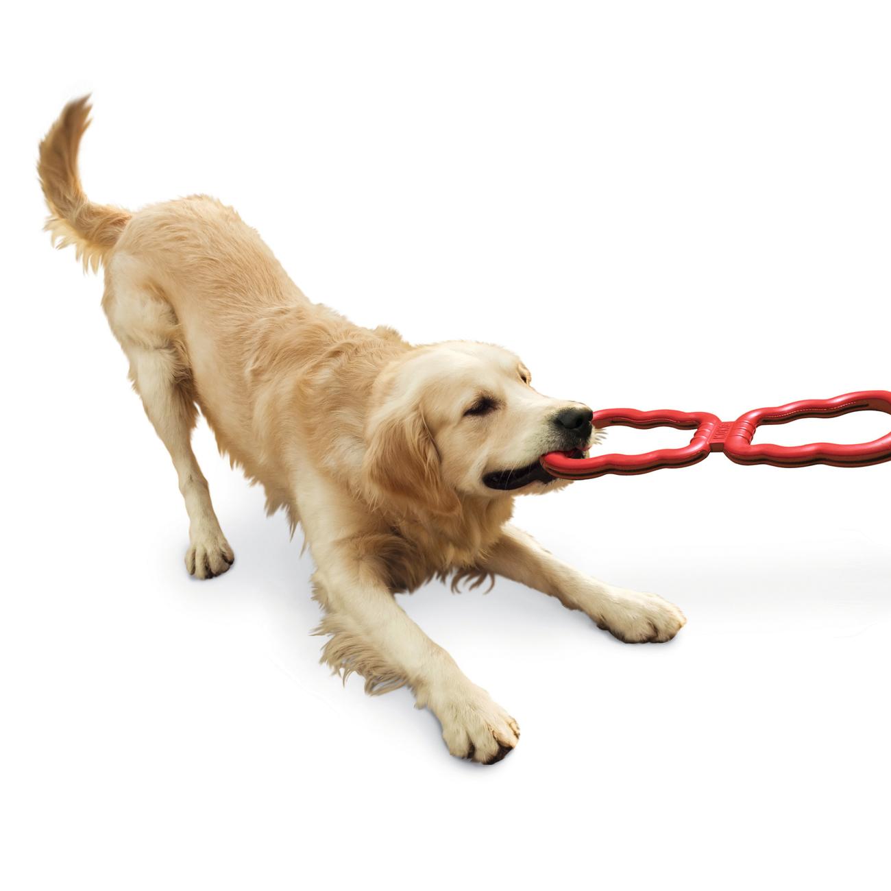 KONG Tug Toy Zerrspielzeug für Hunde, Bild 2