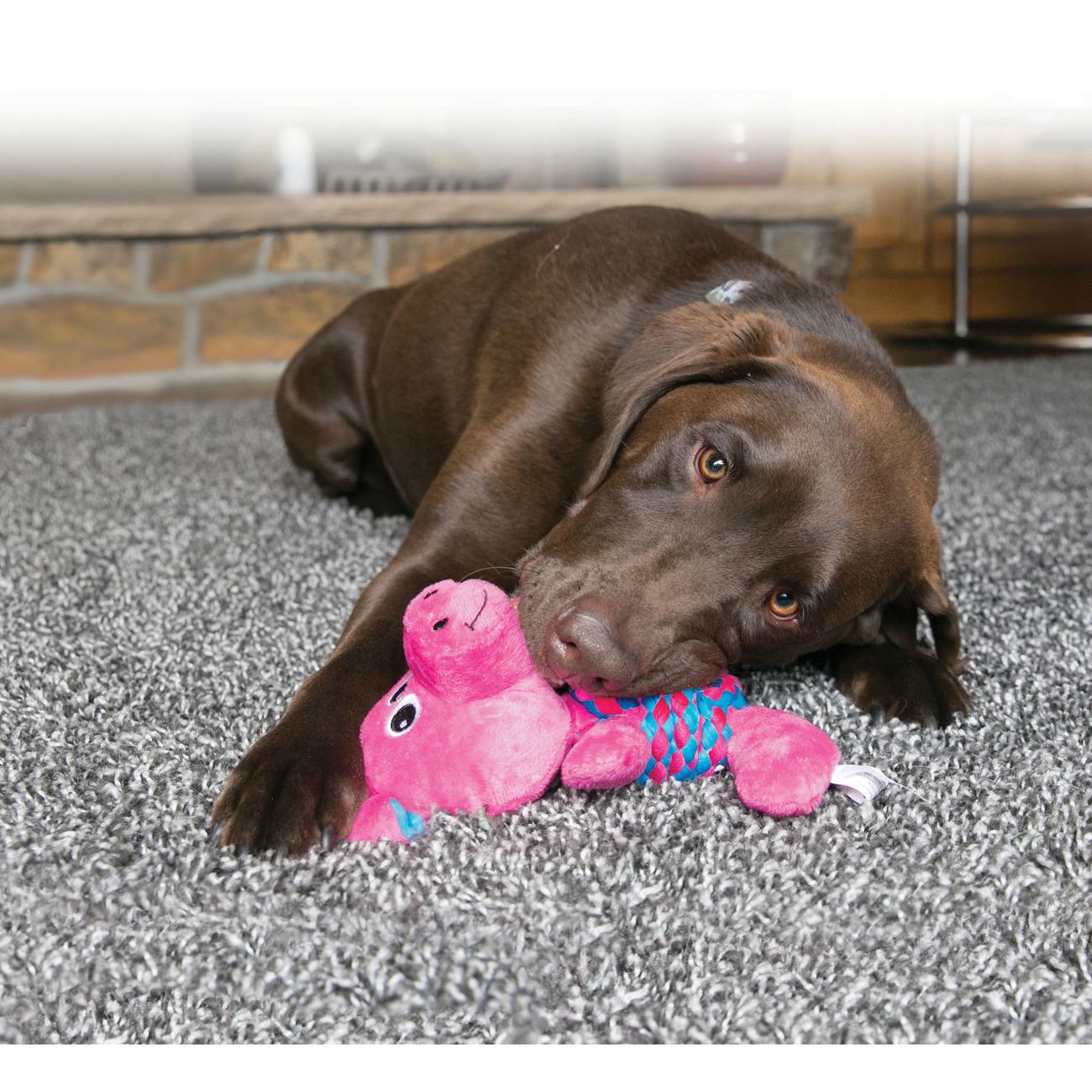 KONG Hundespielzeug Weave Knots, Bild 6