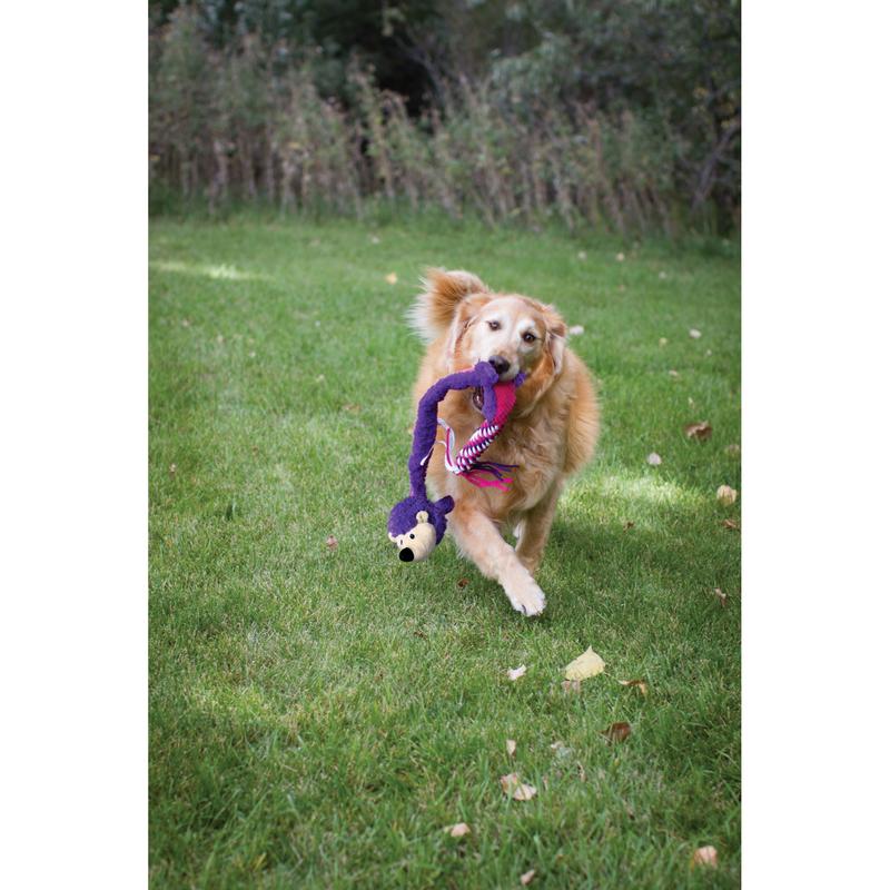 KONG Winders Tails Hundespielzeug, Bild 2