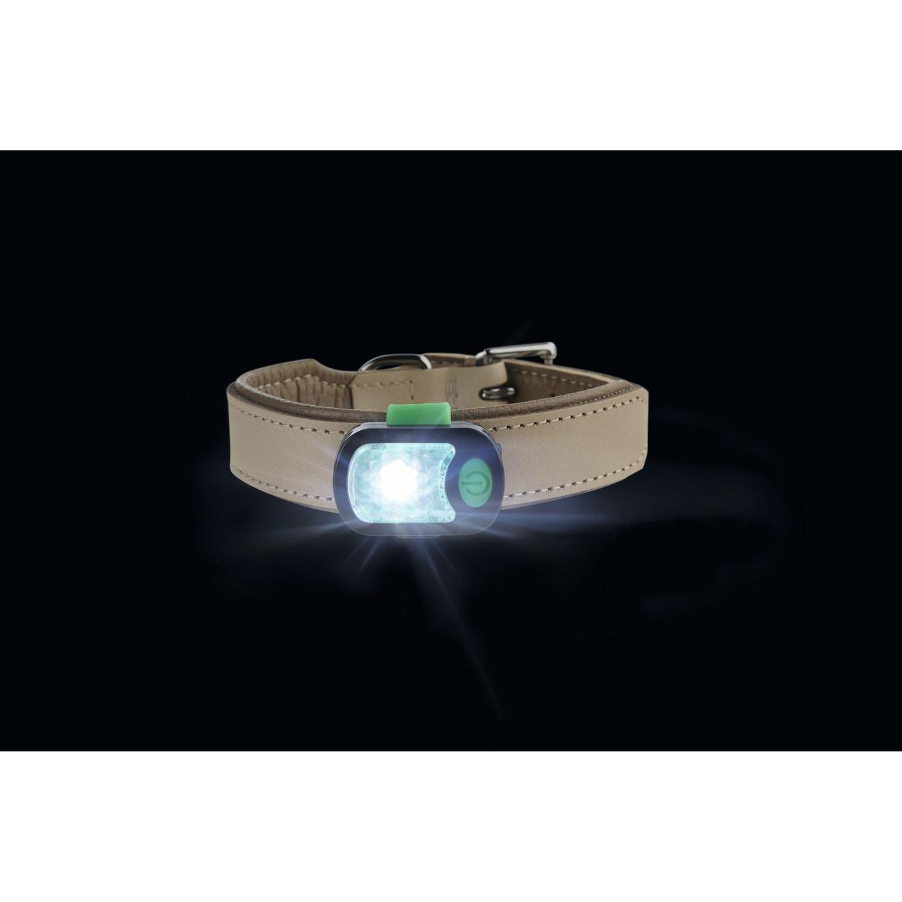 Hunter LED Halsband Anhänger Flashlight 66461, Bild 4
