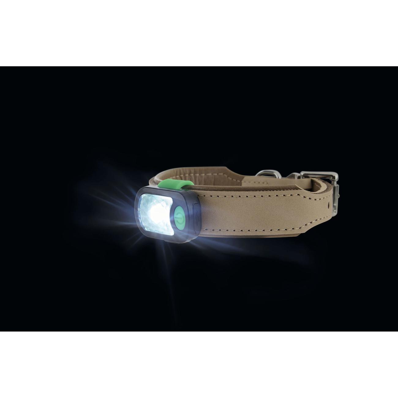 Hunter LED Halsband Anhänger Flashlight 66461, Bild 5