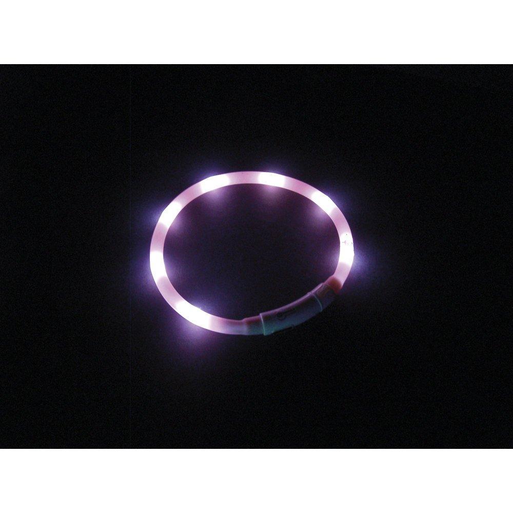 Nobby LED Lichtband PUPPY für Welpen, Bild 4