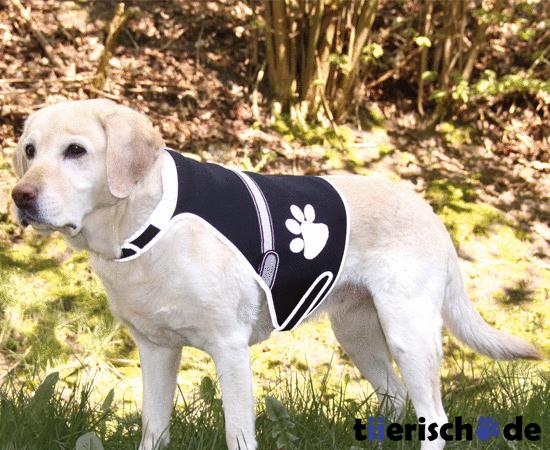 Trixie Leuchtweste für Hunde Flash , Bild 2