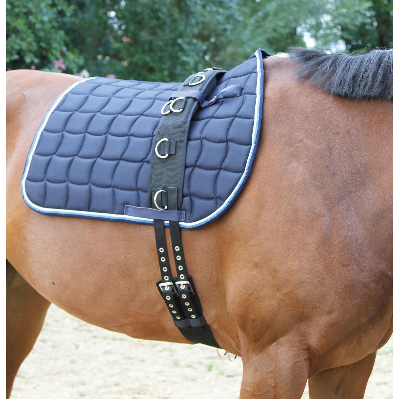 Kerbl Covalliero Longiergurt Nylon mit 9 Ringen, Pony (160-200 cm Umfang)