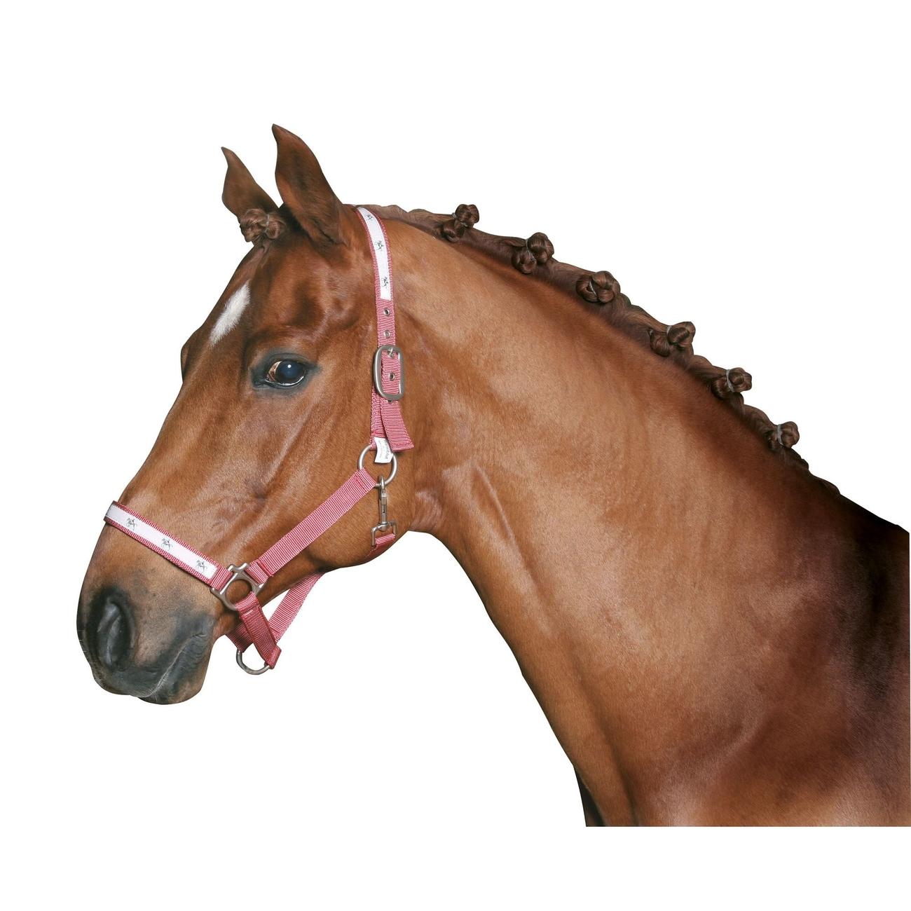 Kerbl Mähnengummi für Pferde, zum Einflechten, Bild 3