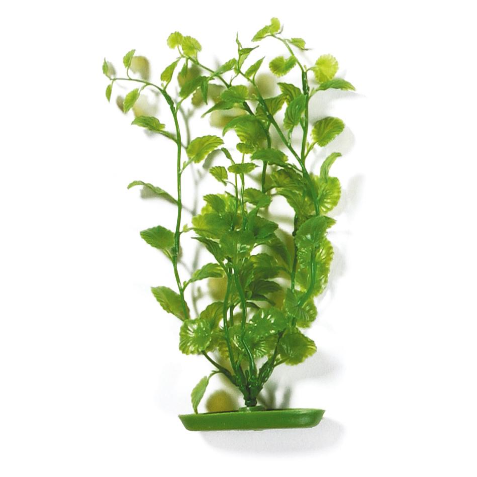Marina Aquascaper Pflanzen ab 30 cm, Bild 3