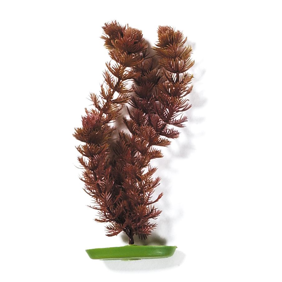 Marina Aquascaper Pflanzen ab 30 cm, Bild 4