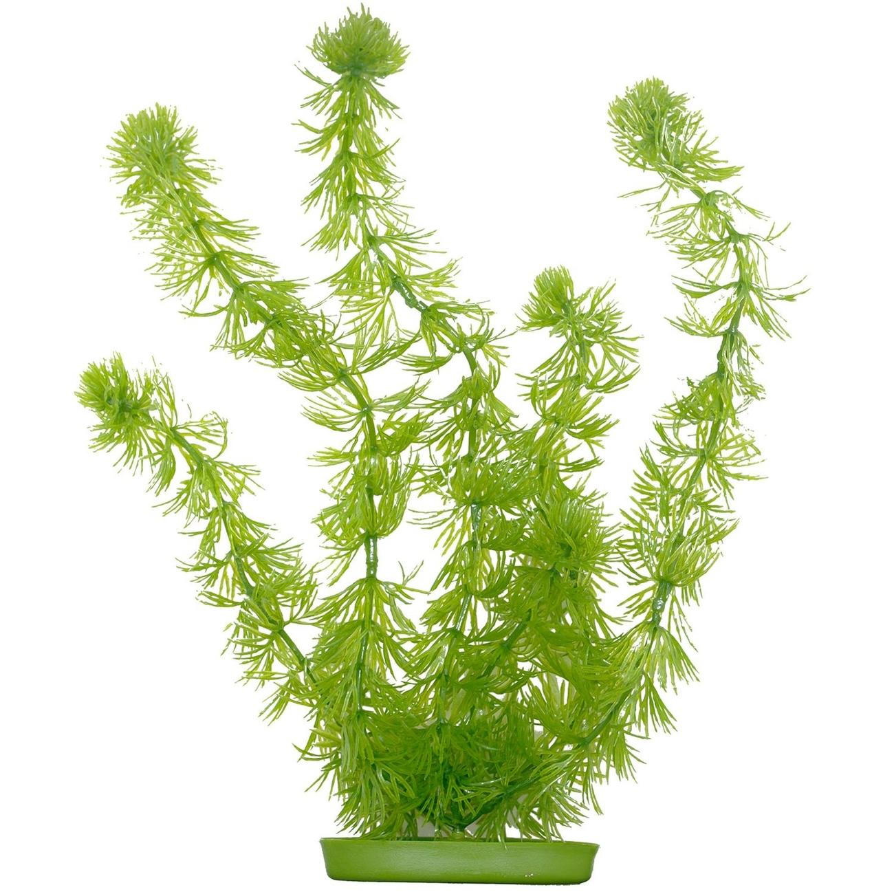 Marina Aquascaper Pflanzen ab 30 cm, Bild 7