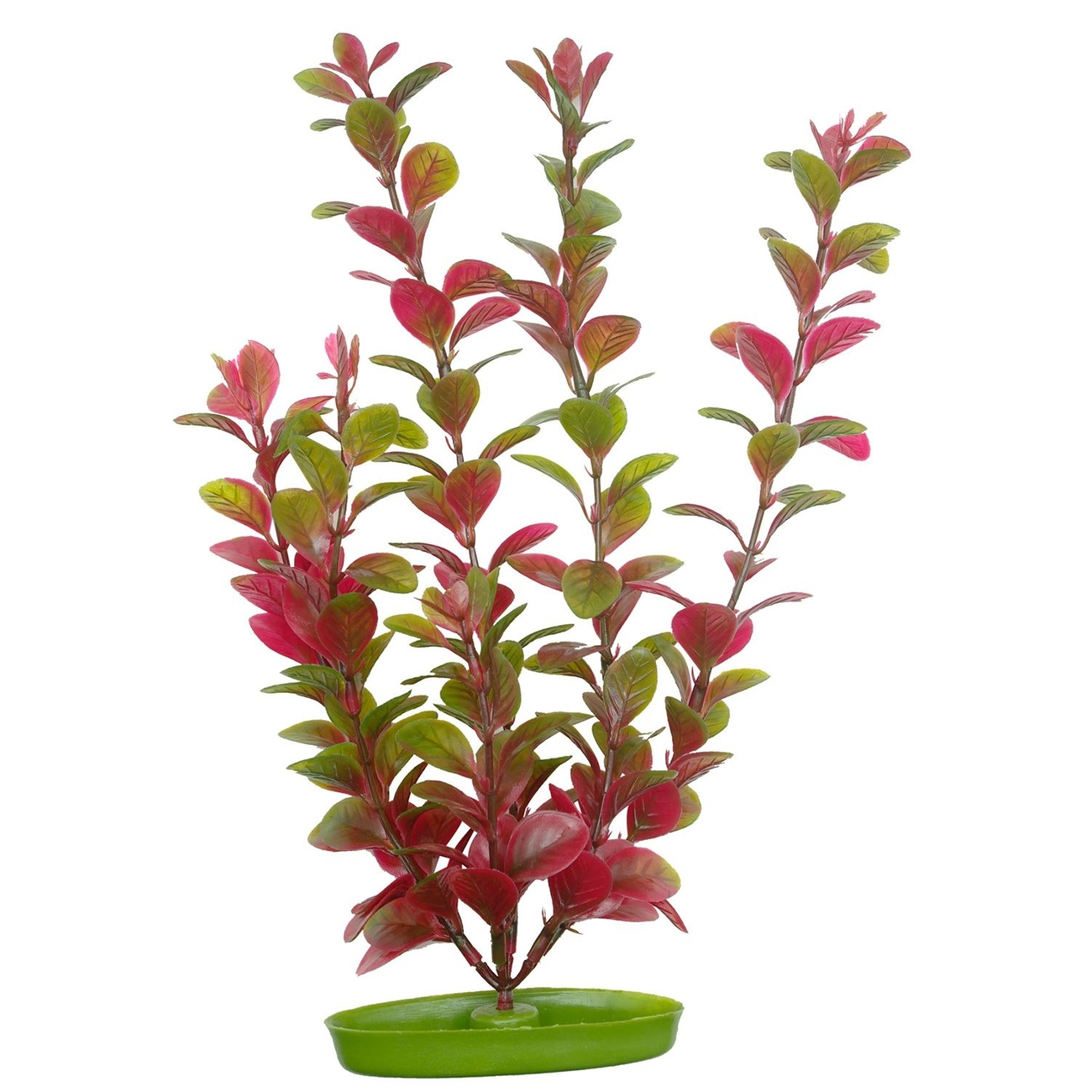 Hagen Marina Aquascaper Pflanzen bis 20 cm, Red Ludwigia - 7,5 x 3,7 x 16,0 cm