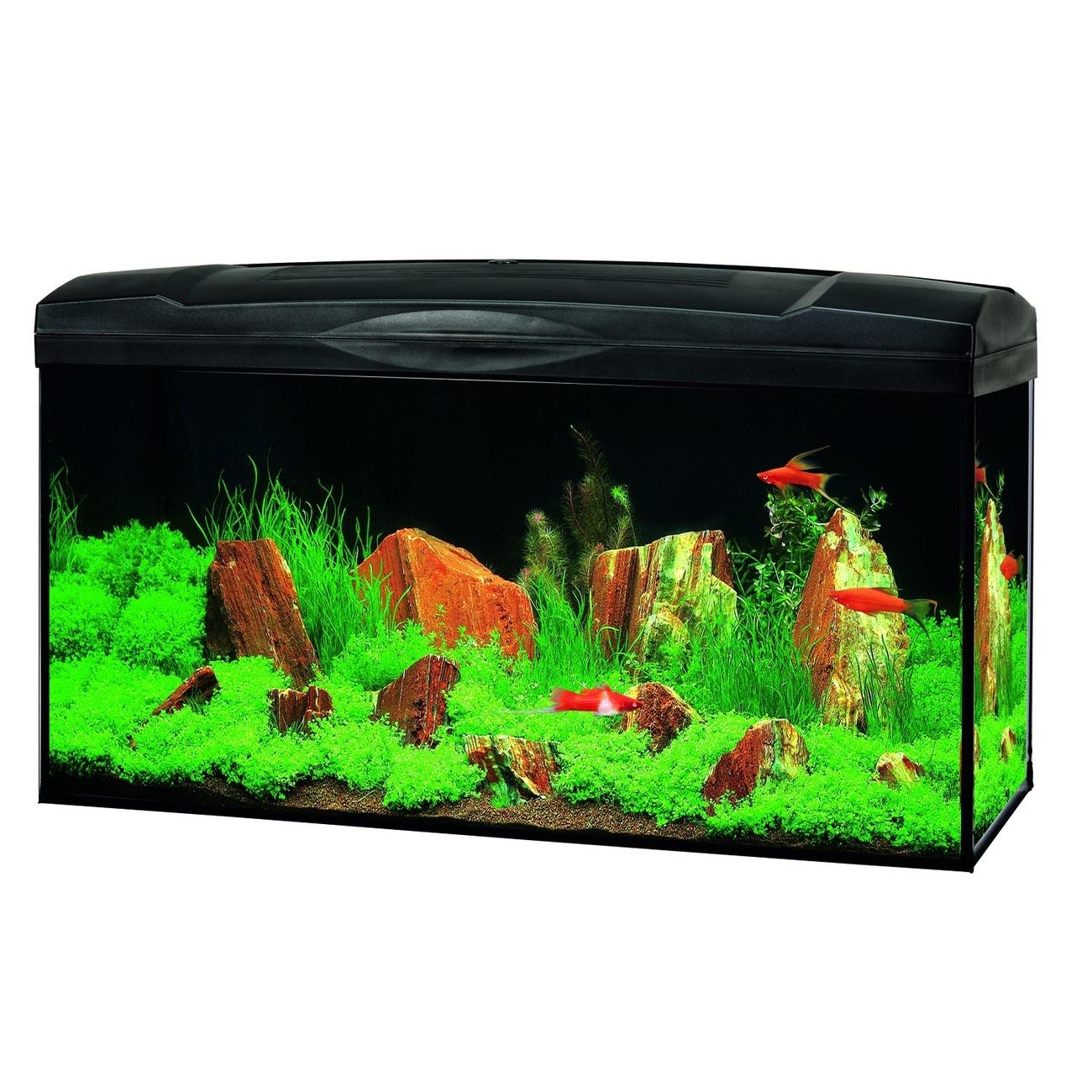 Hagen Marina Basic 96 Glasaquarium-Set, schwarz, Leuchtstoffröhre - 80x30x40 cm