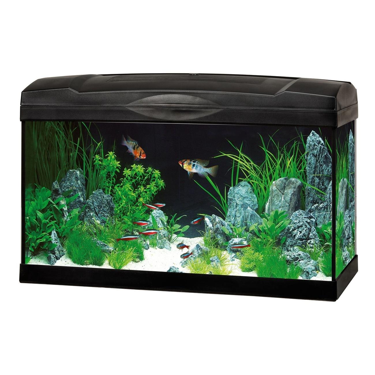 Trixie 6 Aquarium Kunstpflanzen, ca. 25 cm