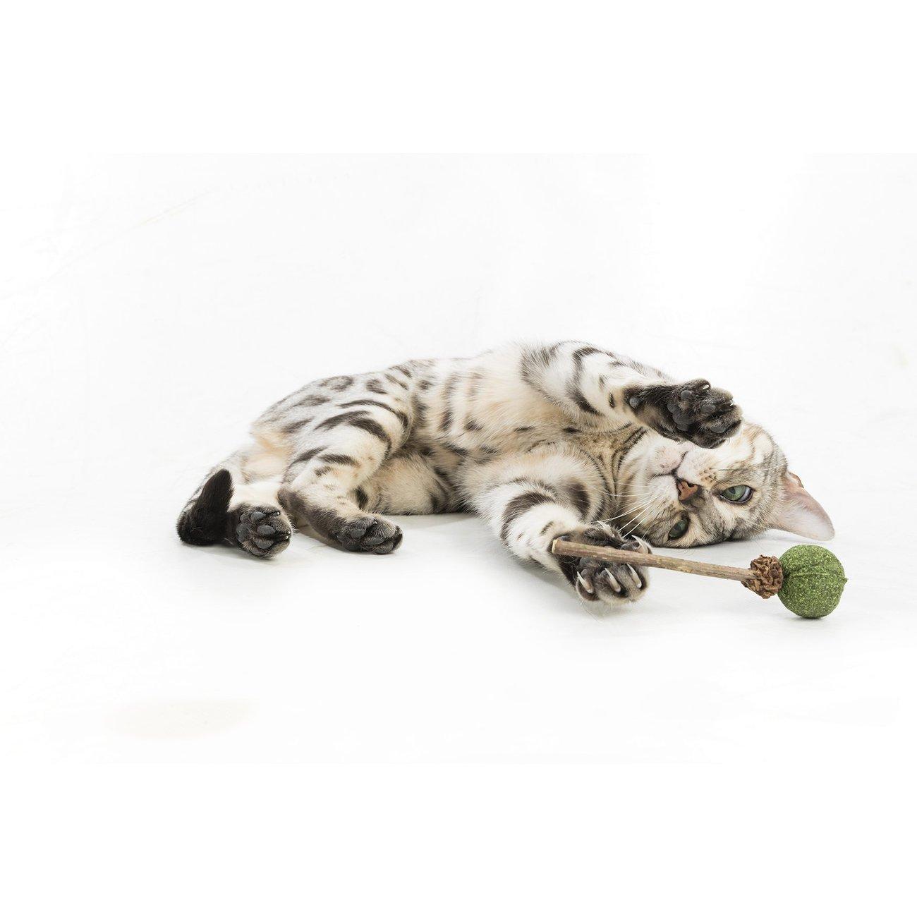 Trixie Matatabi Lolli mit Catnip für Katzen 42430, Bild 2