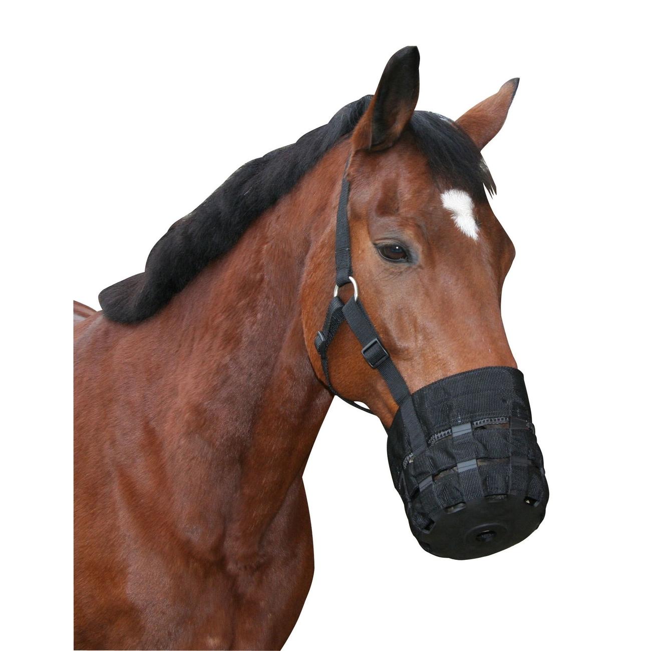 Covalliero Kerbl Pferde Maulkorb mit Halfter, Fressbremse aus Nylon