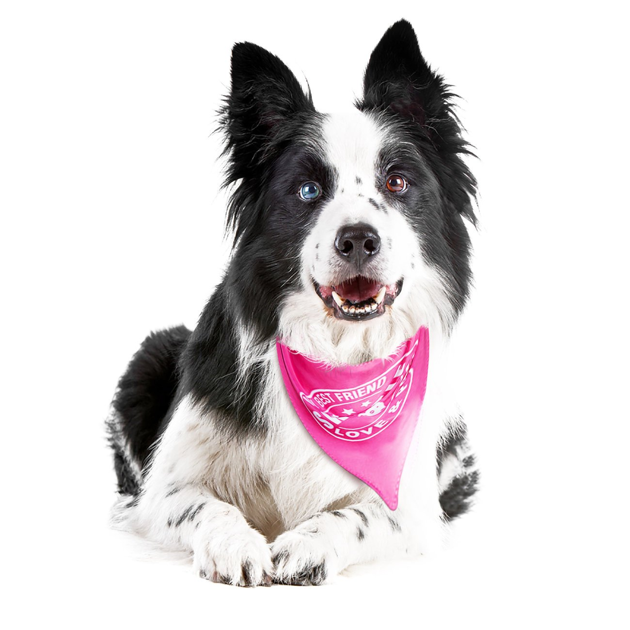 Max & Molly Bandana für Hunde, Pink - Sweetie