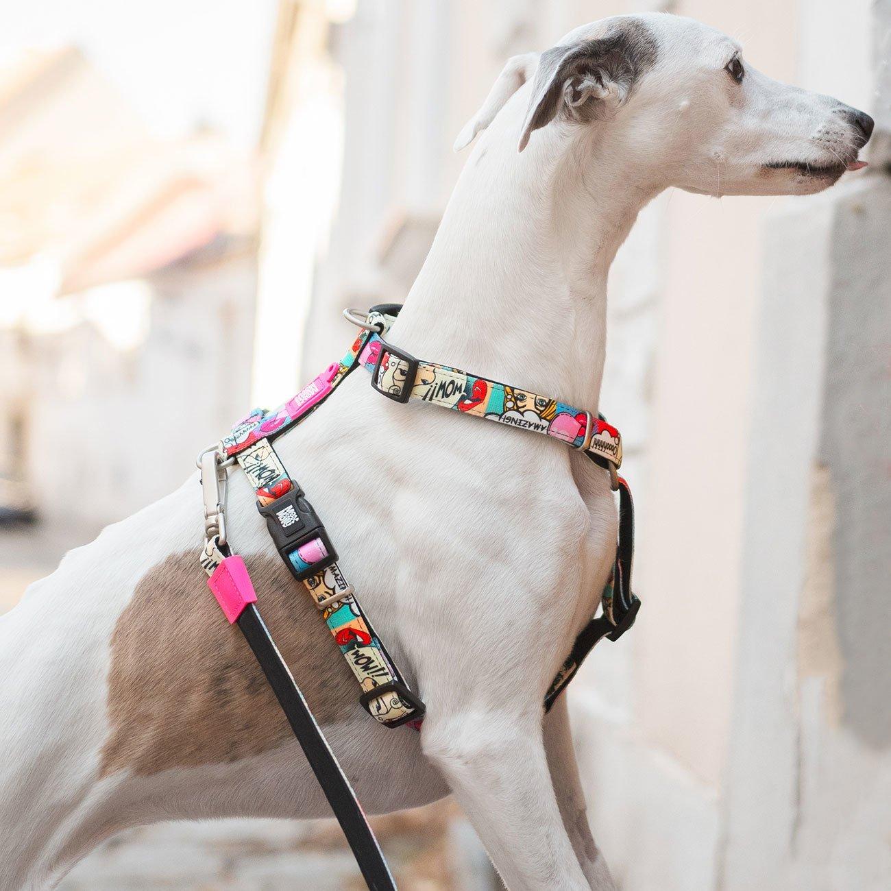 Max & Molly H-Geschirr für Hunde Missy Pop, Bild 2