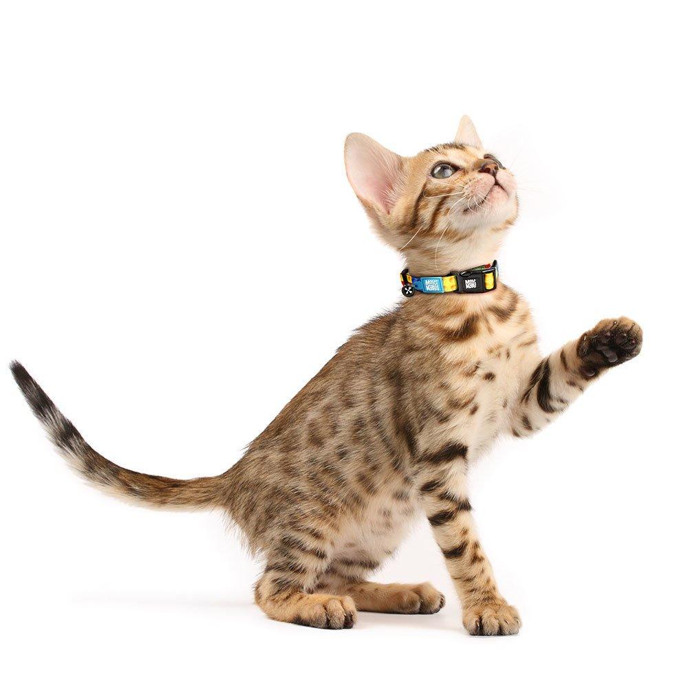 Max & Molly Katzenhalsband Smart ID, Bild 2