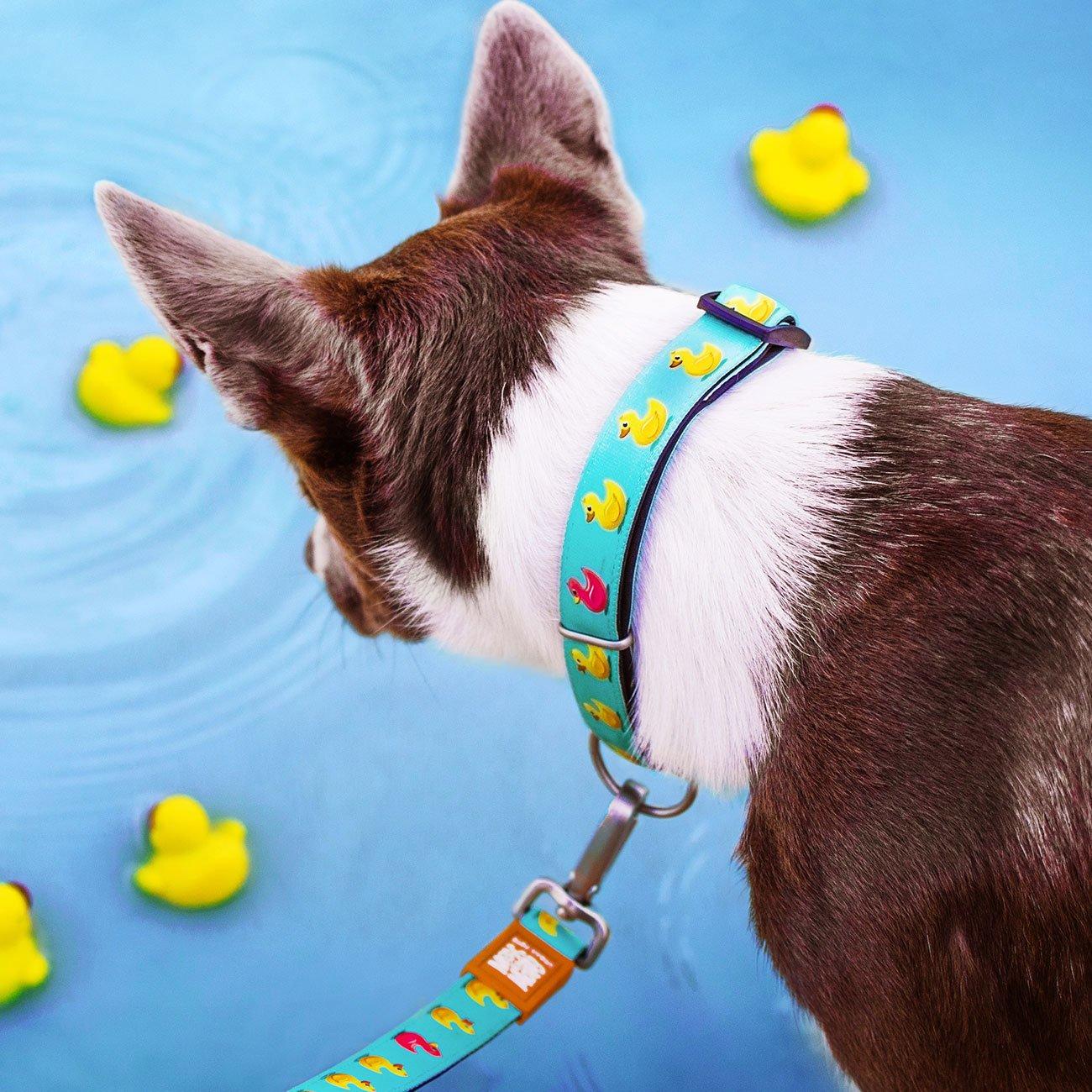 Max & Molly Smart ID Hundehalsband Ducklings, Bild 2