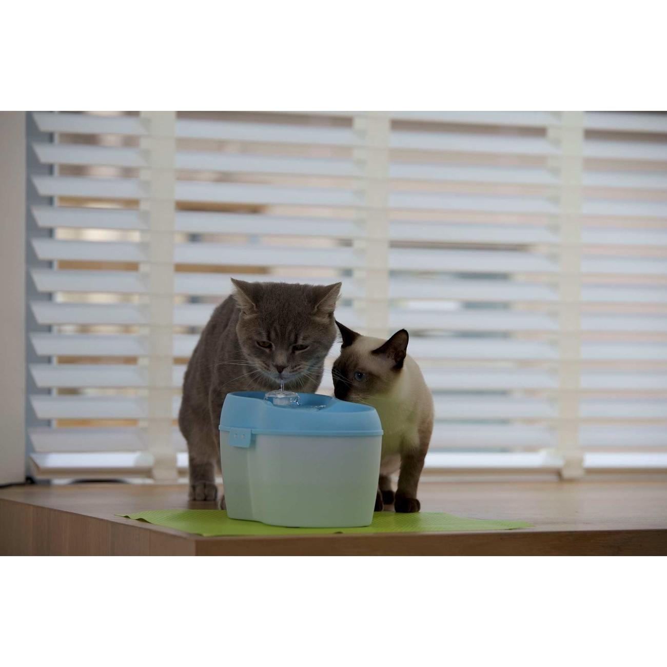 Cat H2O Katzentrinkbrunnen mit Zahnpflege, Bild 4