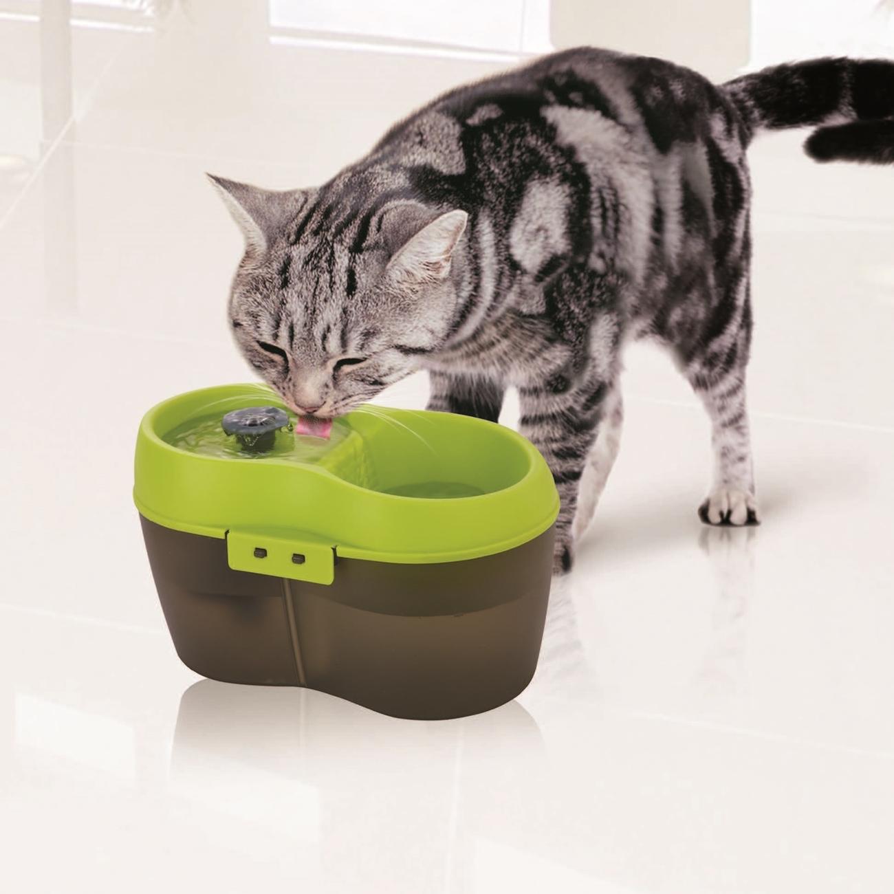 Cat H2O Katzentrinkbrunnen mit Zahnpflege, Bild 5