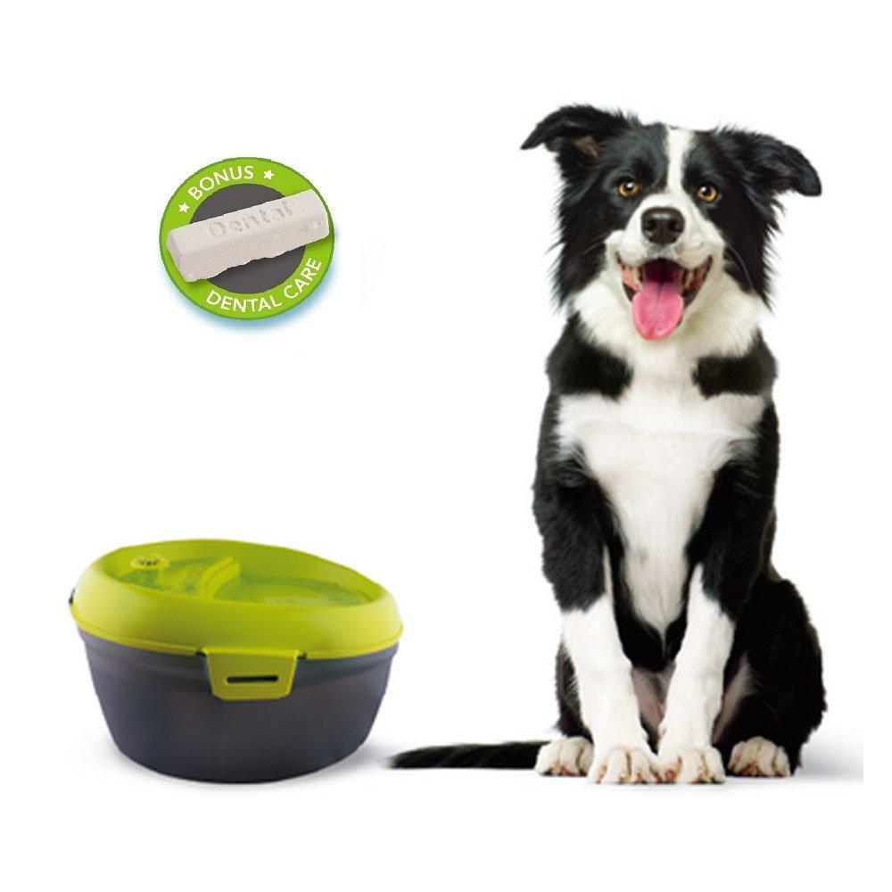 Dog H2O Hundetrinkbrunnen mit Zahnpflege