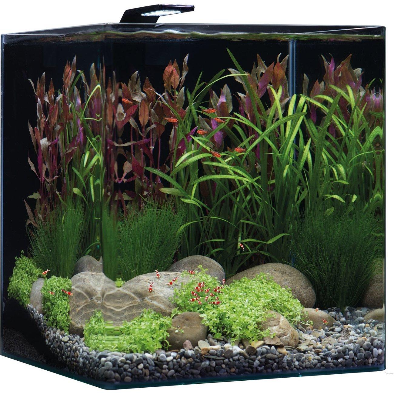 Dennerle NanoCube Basic Style LED Aquarium, Bild 8