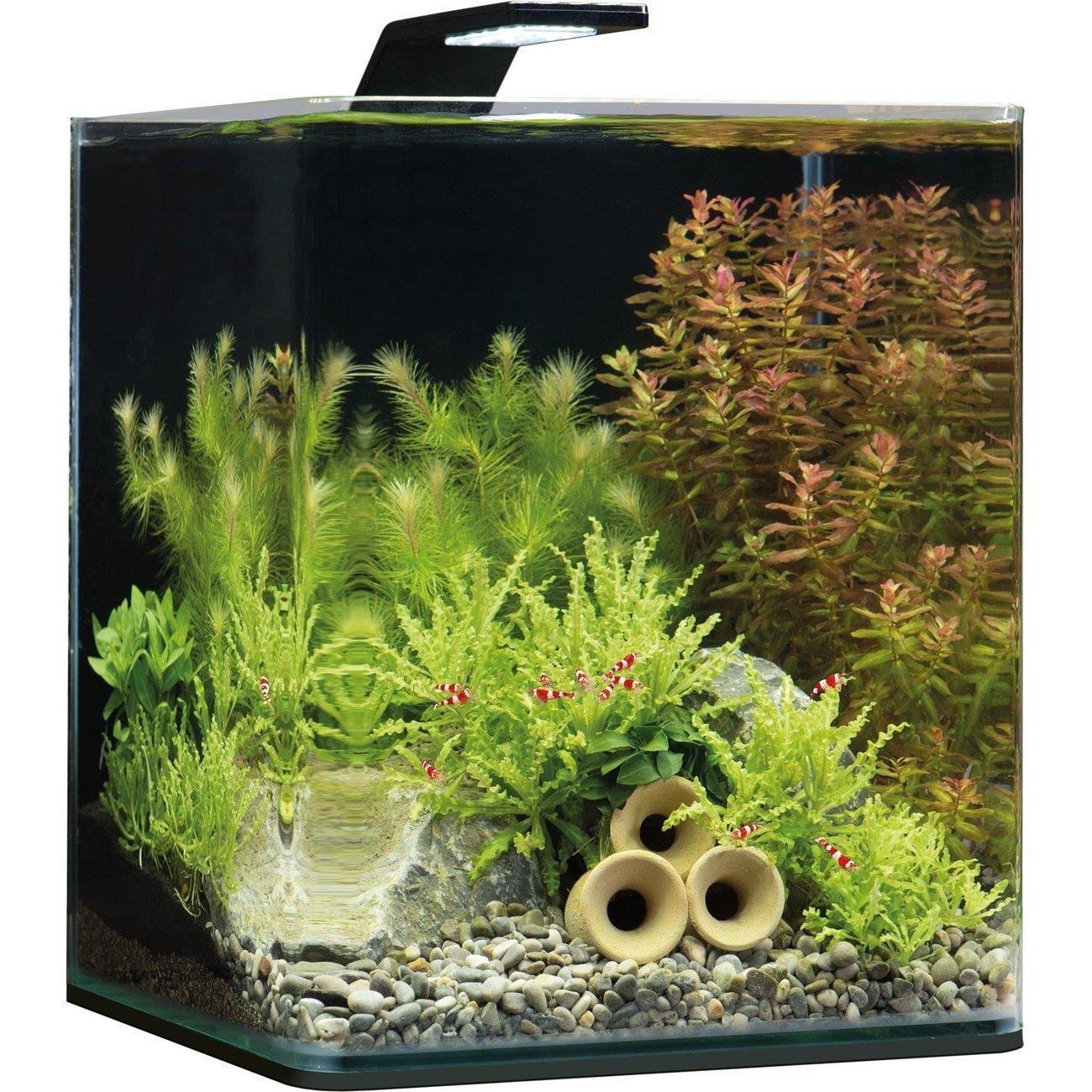 Dennerle NanoCube Basic Style LED Aquarium, Bild 2