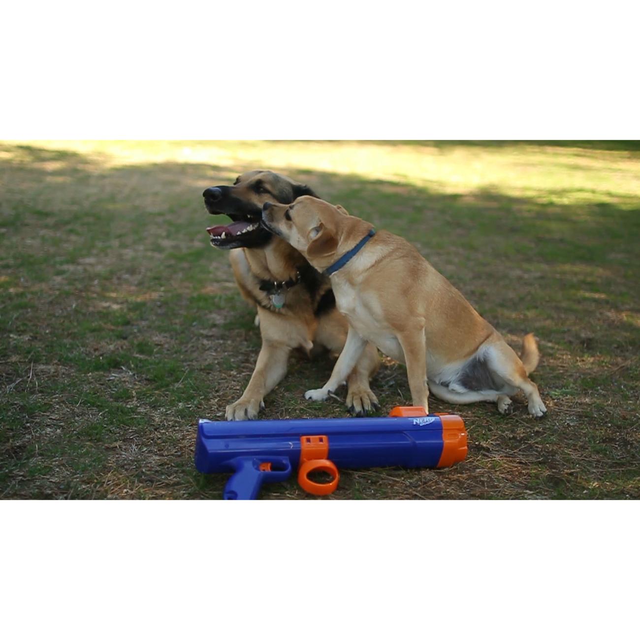 NERF Dog Tennisball Blaster Ballkanone, Bild 9