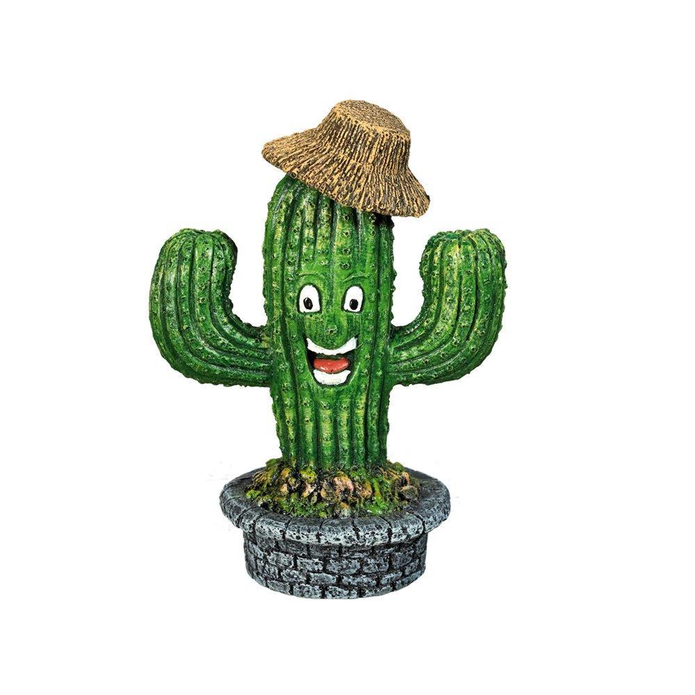 Nobby Kaktus mit Gesicht, 8 x 5,8 x 11 cm