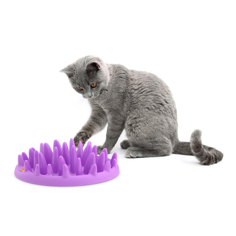 Northmate Catch für Katzen, Bild 3