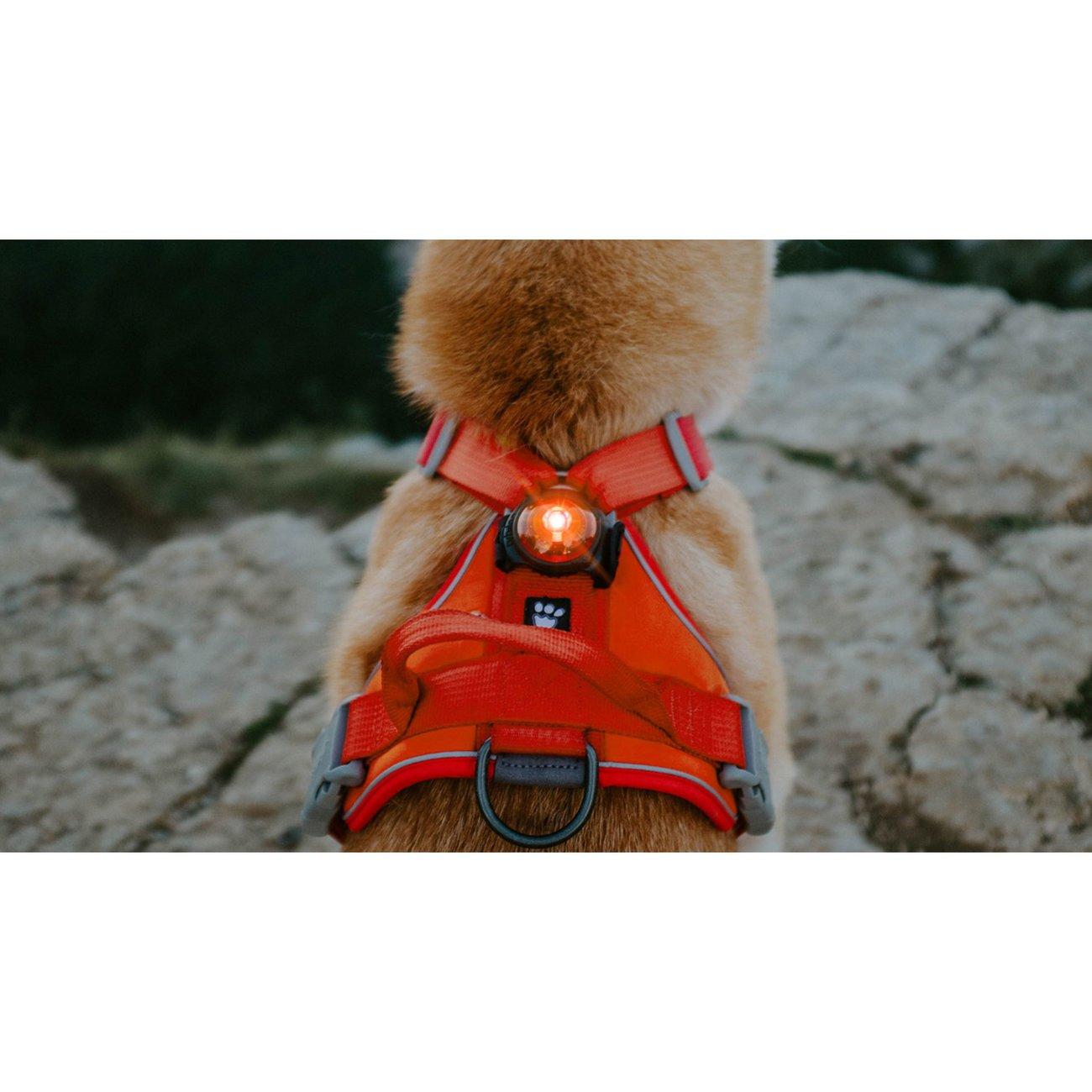 Orbiloc AMBER Safety Pack Sparset, Bild 4