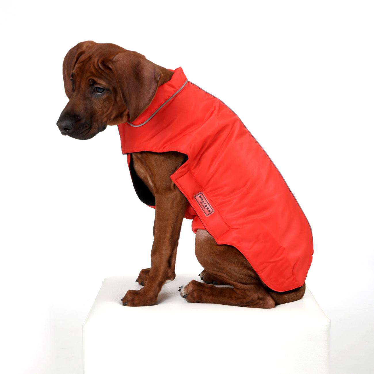 Wolters Outdoorjacke Jack für Hunde, Bild 8
