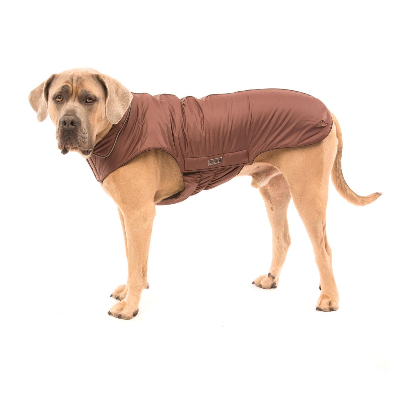Wolters Outdoorjacke Jack für Hunde, Bild 11