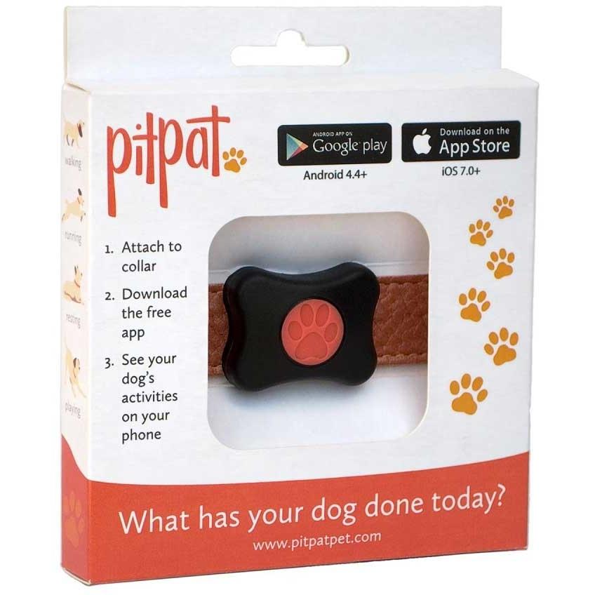 PitPat Aktivitätsmonitor für Hunde mit App