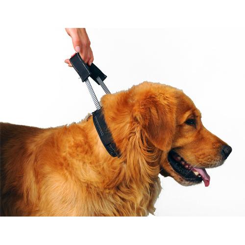 PatentoPet Sport Halsband mit integrierter Kurzleine, Bild 5