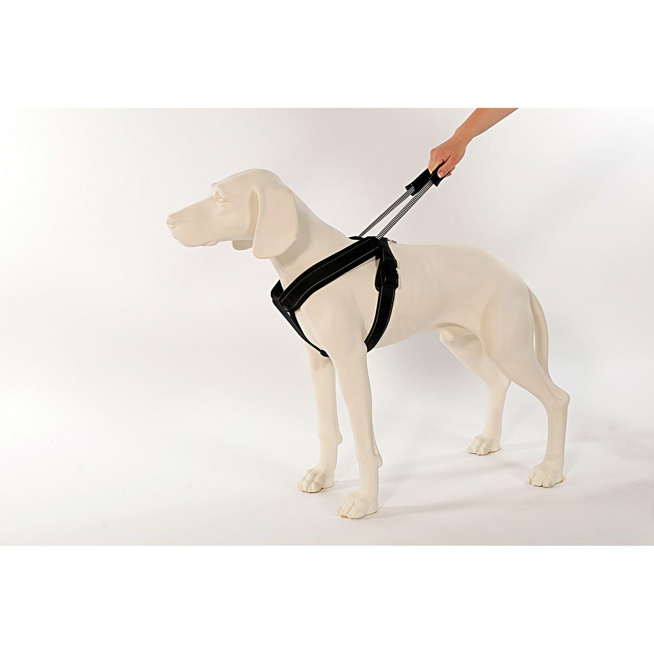 PatentoPet Sport Hundegeschirr mit integrierter Leine, Bild 3
