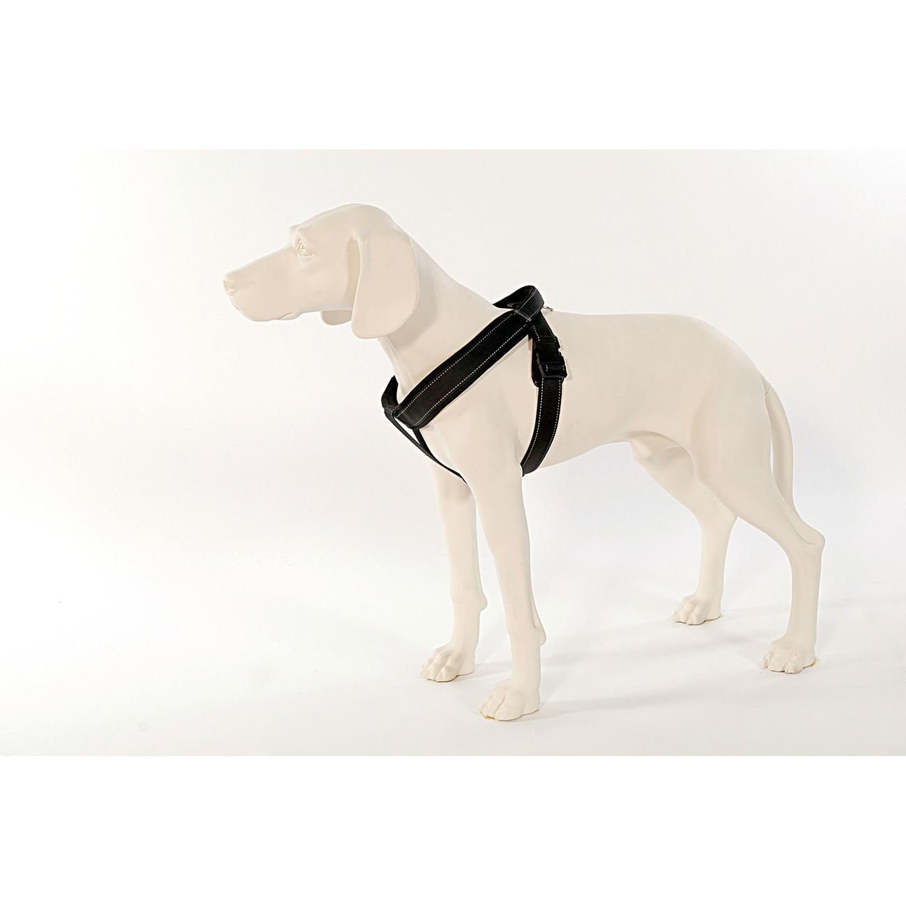 PatentoPet Sport Hundegeschirr mit integrierter Leine, Bild 2