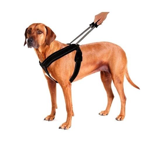 PatentoPet Sport Hundegeschirr mit integrierter Leine, Bild 4