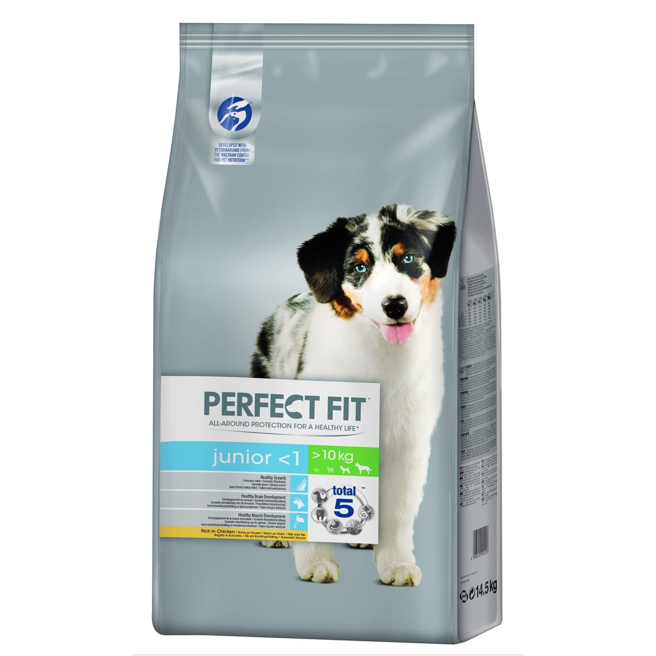 Perfect Fit Hund, Junior M/L