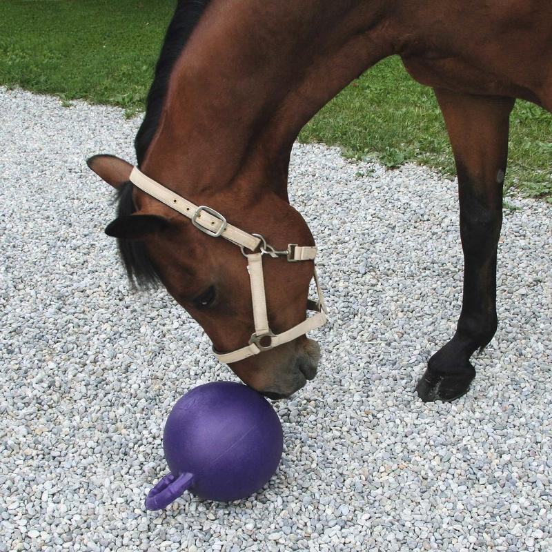 Kerbl Pferdespielball Horsen Around, Bild 2