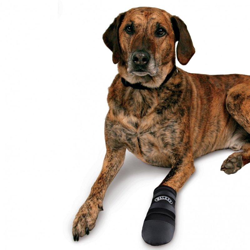 Trixie Pfotenschutz für Hunde Hundeschuhe Walker Care 1956, Bild 3