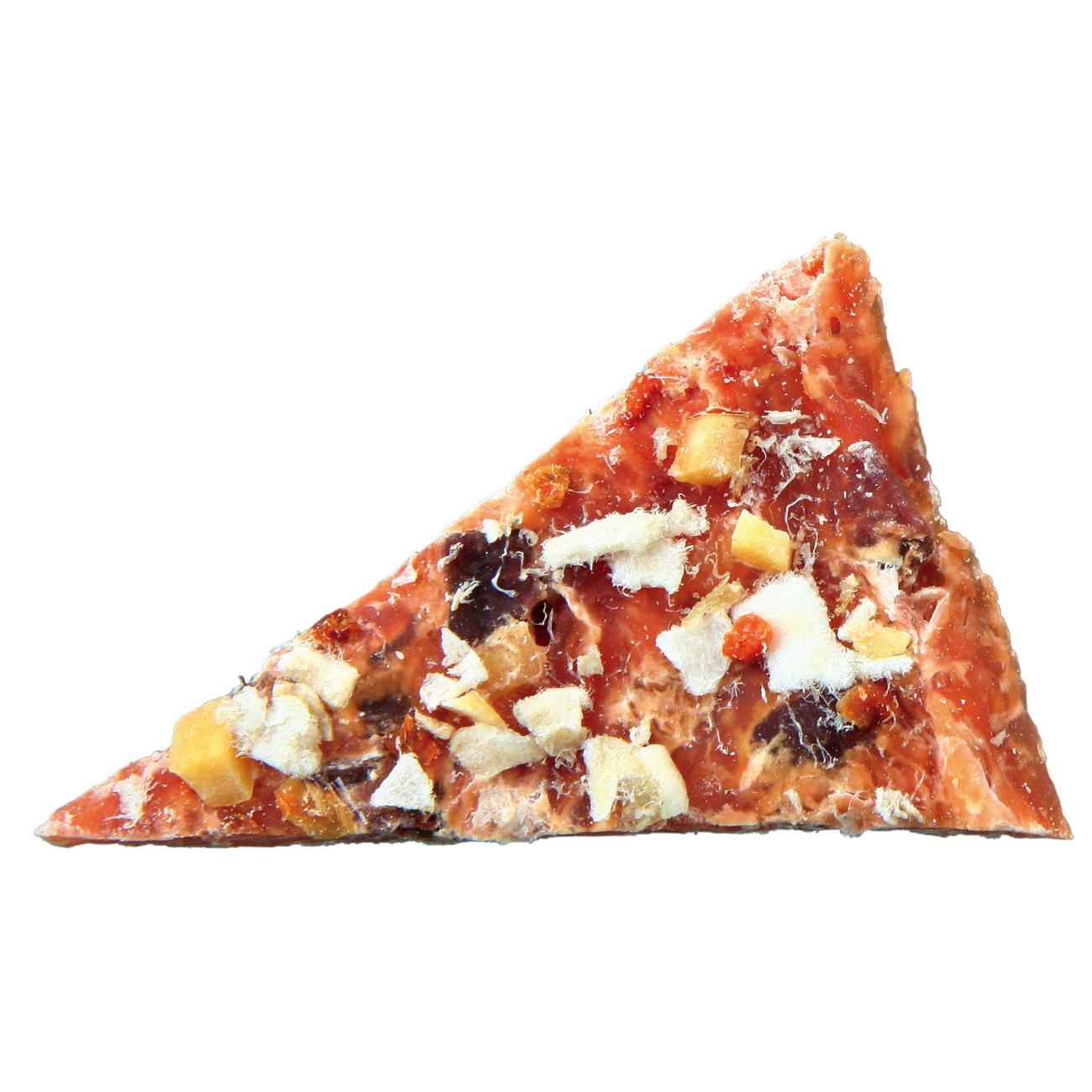 Trixie Premio Chicken Pizza Hundesnack 31702, Bild 2