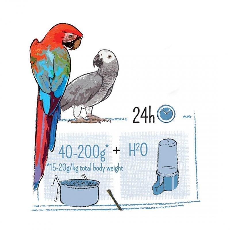 Witte Molen Puur Vogelfutter für Papageien, Bild 3