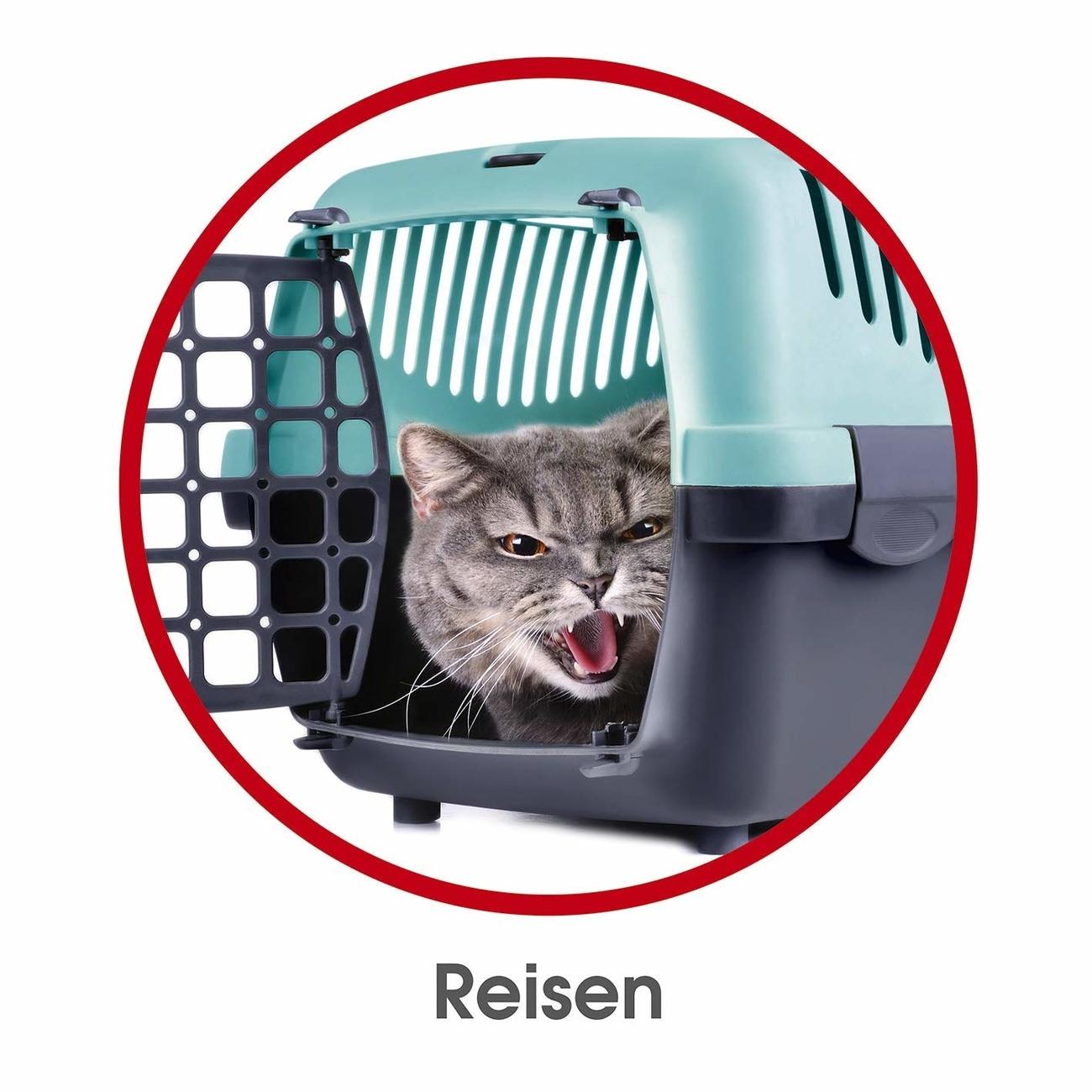 RelaxoPet Cat&Dog Tierentspannungssystem, Bild 7