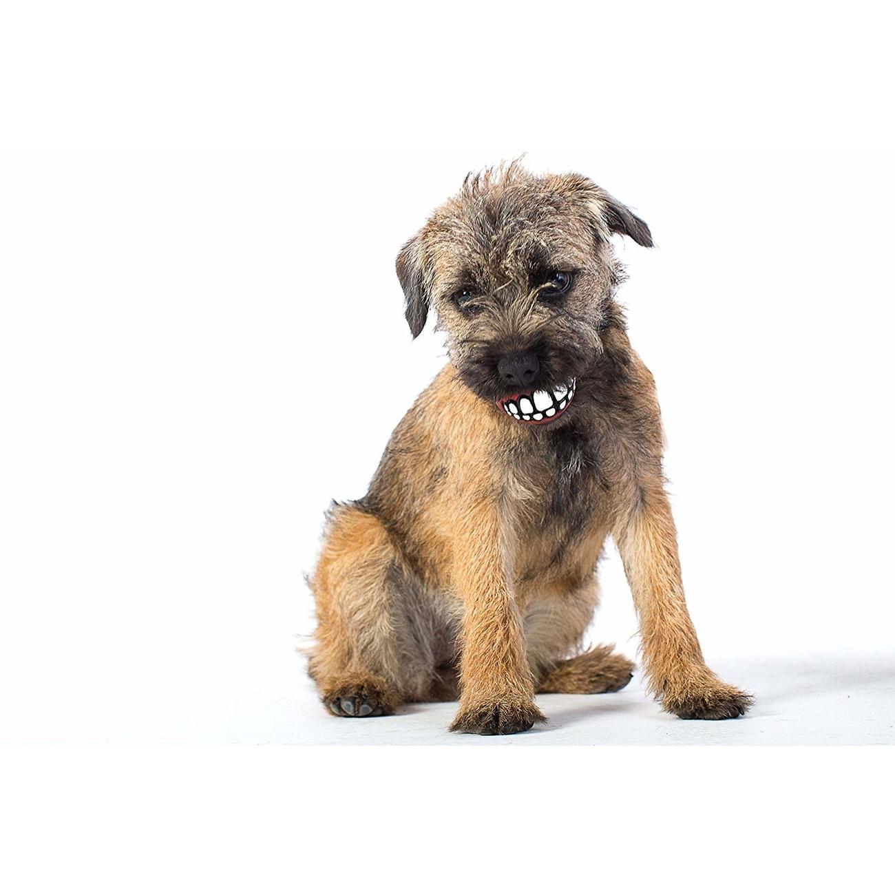 Rogz Grinz Ball für Hunde, Bild 6