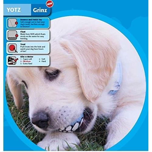 Rogz Grinz für Welpen Hundespielzeug, Bild 3